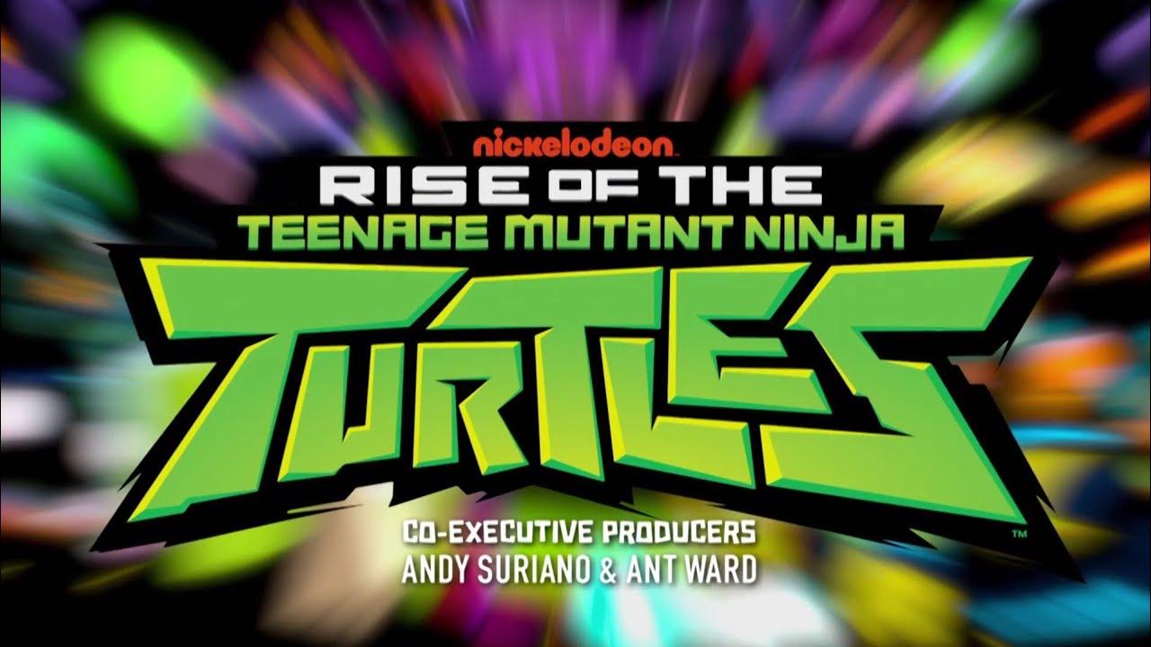 O Despertar Das Tartarugas Ninja Abertura 1ª Temporada