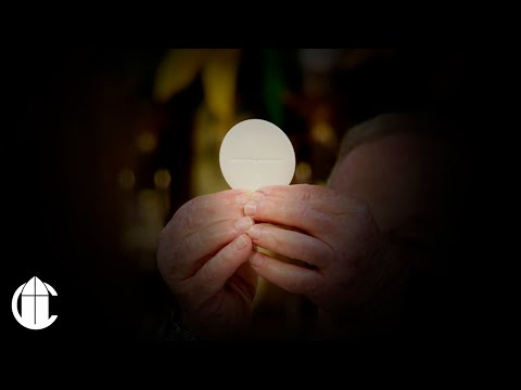 La Santa Misa | 2 Domingo Tiempo Ordinario
