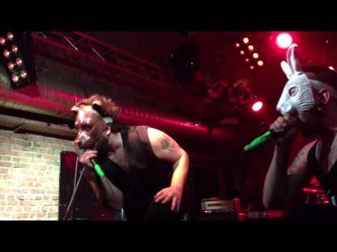 The Bunny The Bear - Ocean Floor (live at Matrix 2011) HD