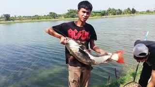 One a day : เทสคันตกปลาราคาถูกแต่คุณภาพเกินราคา EP2