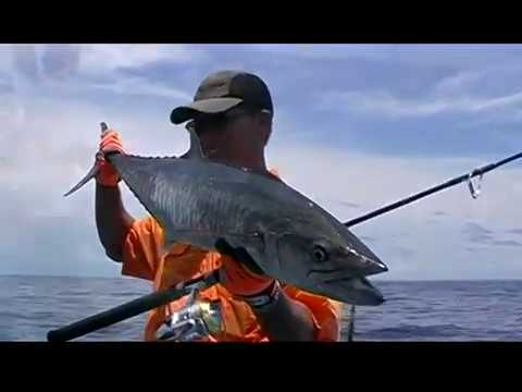 NO.23 THE COMPLETE MACKEREL FISHING GUIDE