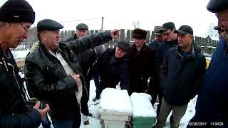 Пчеловодство.В гостях у Горловского Алексея&beekeeping