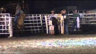 Ribbon Roping Enterprise Utah Rodeo 2013 (Night 2)