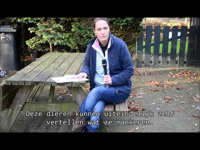 Testimonial Communiceren met Dieren Linda