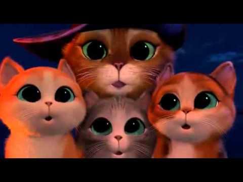 Кот в сапогах и три котёнка.