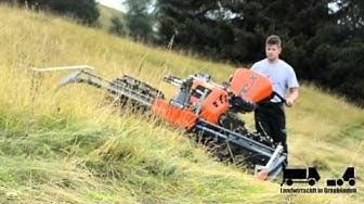 Plantahof Feldtag in Obermutten#landwirt100k