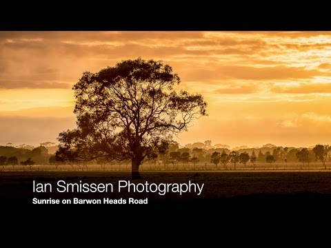 Landscape Photography #10 Sunrise and a Tree