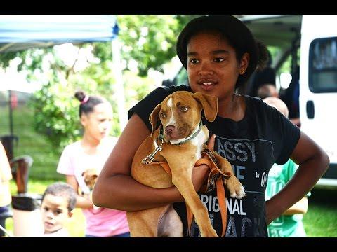 Helping the pets of Sophiatown