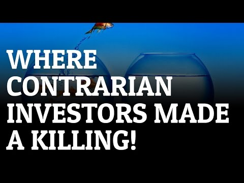 Does it Pay to Be a Contrarian Investor?