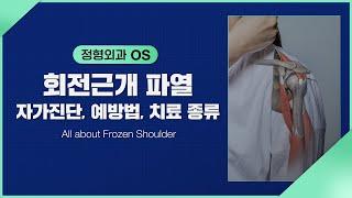 [정형외과] 어깨 힘줄…