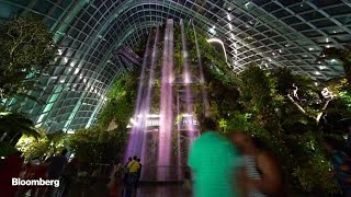 There Have Never Been So Many Tourists Coming to Singapore
