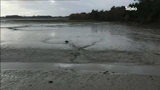 Pêche à pied : 2 personnes trouvent la mort (Finistère)