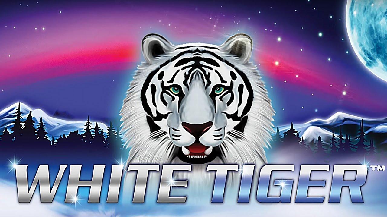 White tiger slot big win bonus youtube white tiger slot big win bonus biocorpaavc