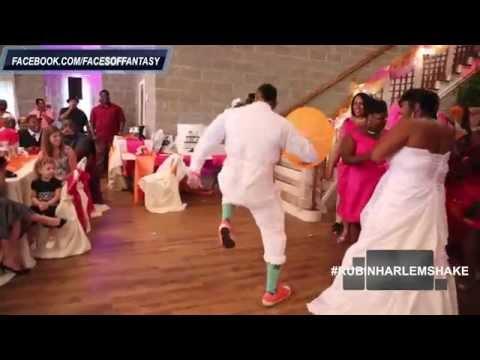 BEST WEDDING PARTY HARLEM SHAKE