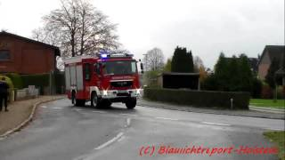 [der Firefighter mit Dauerhorn] HLF 20 FF Trittau