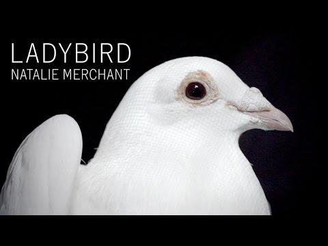 Natalie Merchant - Ladybird