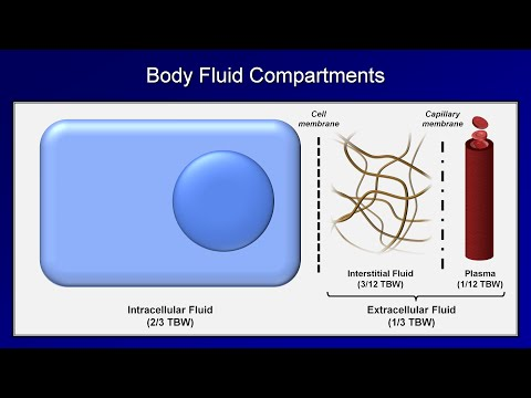 IV Fluids: Lesson 1 - Basic Principles