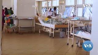 Lassa Fever Epidemic in Nigeria Far Deadlier Than Covid-19