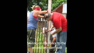 Diy Chicken Coop Out Of Recycled Materials (no Music)