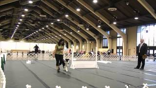 Dpca Nationals Akc Rally Excellent B Trial 1 10.12.13