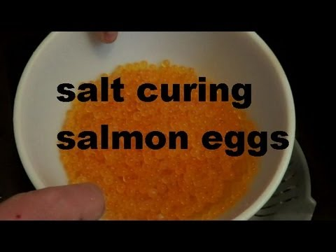 SALT CURE SALMON EGGS RECIPE