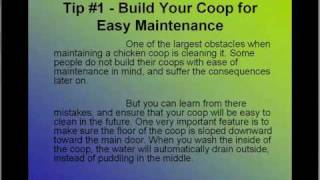 Building A Chicken Coop And Designing Coop Plan For Chicken.avi