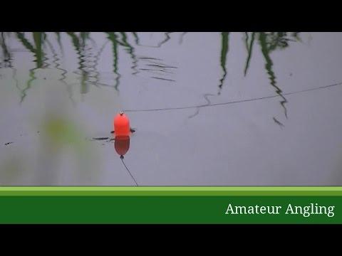 Float Paternoster Dead Bait Pike Rig