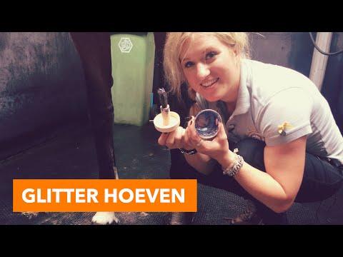Glitter hoeven maken | PaardenpraatTV