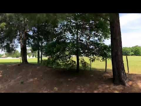 Chuck wagon races 2018 (little red wagon)