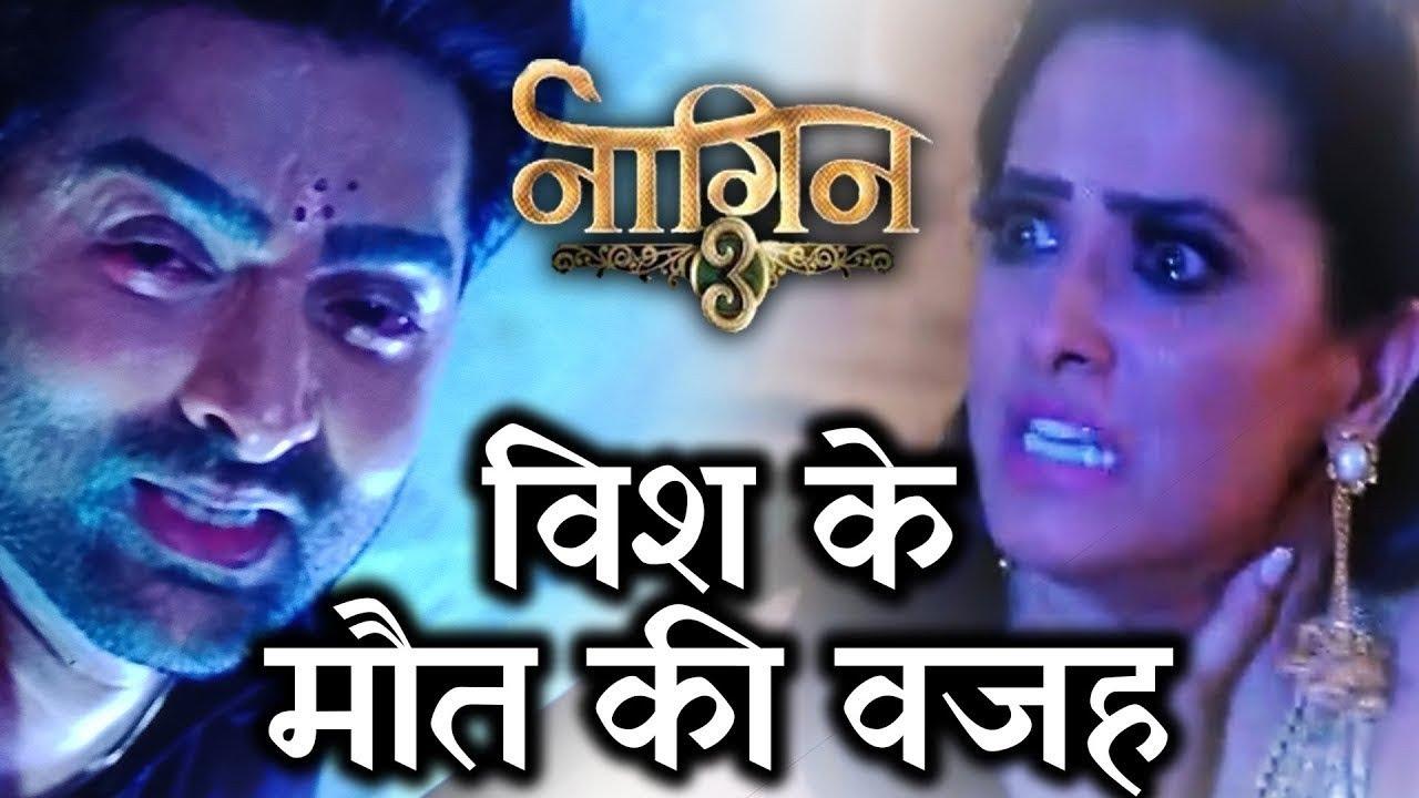 Download Shocking Reason Behind Vish's End | Anita | Rajat Tokas | Naagin 3 full Episode 20th oct 2018