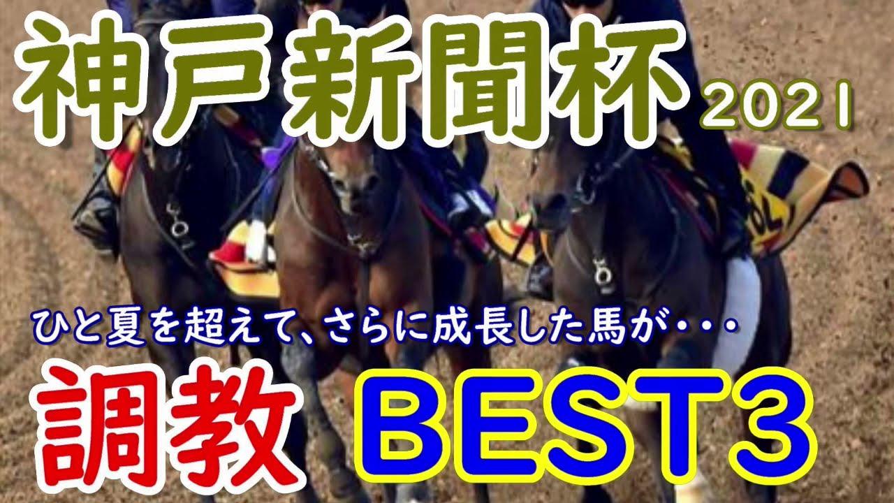 【神戸新聞杯】神戸新聞杯2021 調教BEST3 ダービー馬シャフリヤール登場!!!ステラヴェローチェもいいが、ひと夏超えてさらに成長した・・・【調教診断】