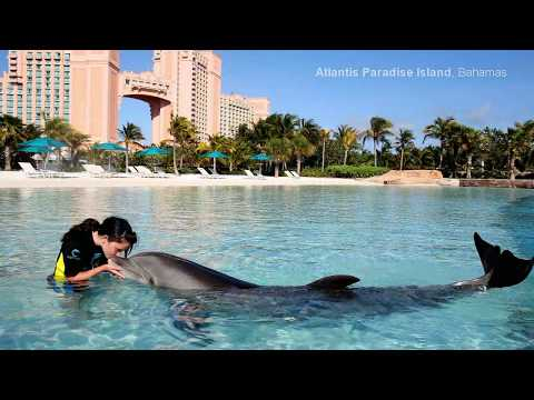 World Most Amazing Hotels HD