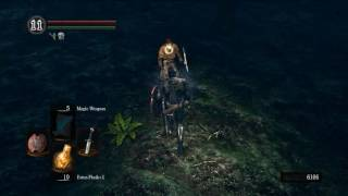 Dark Souls soul farming in Darkroot Garden