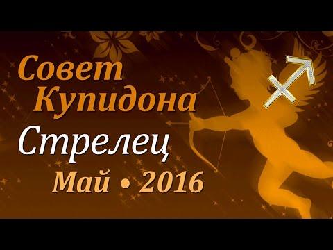 Стрелец, совет Купидона на май 2016. Любовный гороскоп.