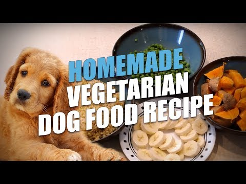 Food to make for breakfast recipes indian veg dog