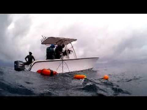 Tuna Trip Panama 2012