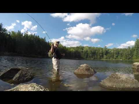 Fly Fishing in the Pemigewasset Wilderness