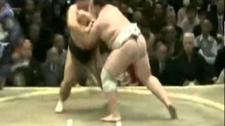 На соревнованиях по сумо пострадал судья