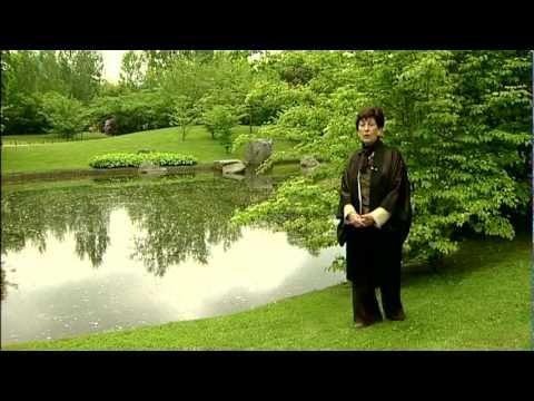 Jardin japonais d 39 hasselt youtube for Jardin japonais hasselt 2016