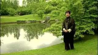 Jardin japonais d