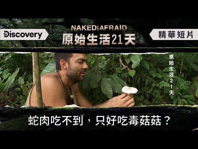 翻開覆蓋的陷阱卡~一顆毒菇!一波三折的馬來西亞生火之旅《原始生活21天》Naked and Afraid