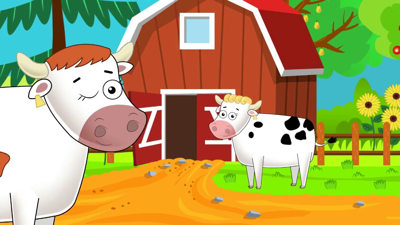 svorio netekančios karvės