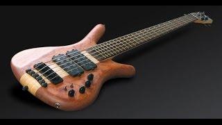 10 Best Bass Guitars Review 2017 | What Bass Should I Buy ? #bassguitar