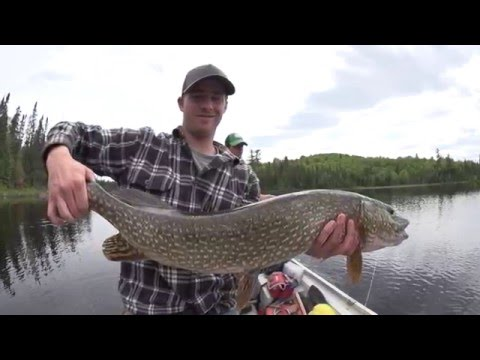 Quebec Outfitter's Camp - Wapus Lodge