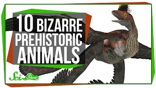Repeat youtube video 10 Strange-Looking Prehistoric Animals