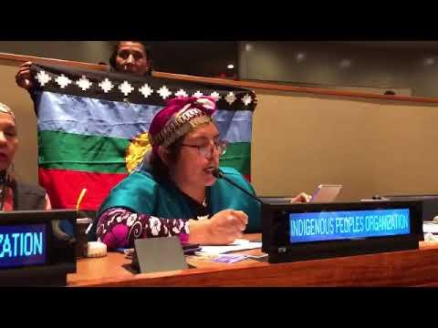 UN New York: Mapuche leader Machi Celestino Cordova in hunger strike