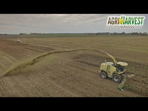 Insolite crazy silage in Italy   No trailers   2016   4K