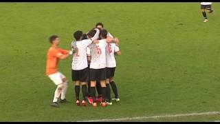 Imolese-Pianese 2-2 Serie D Girone D