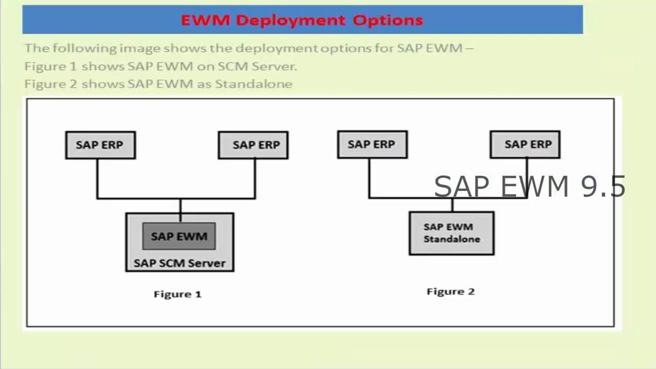 SAP EWM 9 5 Online Training | EWM Functional Online Training for WM,  MM,SD,TM,Logistics,SCM
