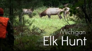 Michigan Elk Hunt on Public Land